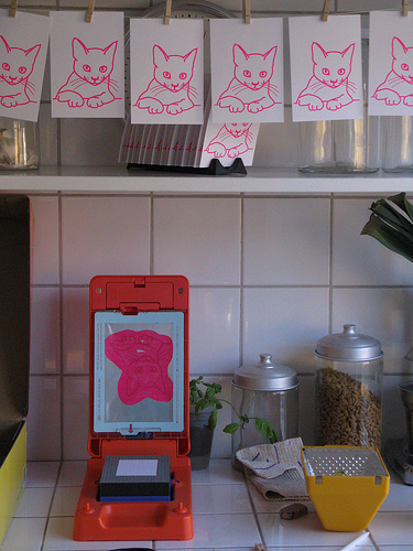 gocco in the kitchen
