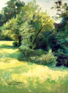 Trees, John Tinari