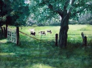 Cows, John Tinari