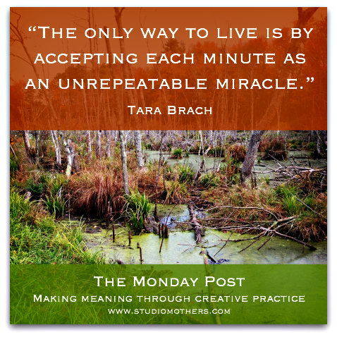 Tara Brach quote 2