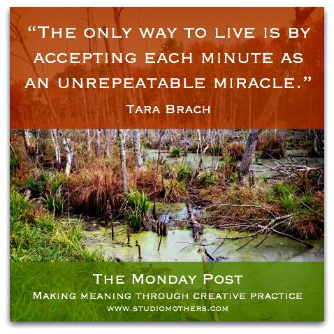 Tara Brach quote